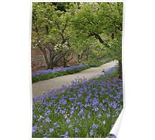 Purple Path Poster