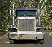 Logging Truck I by DaveKoontz
