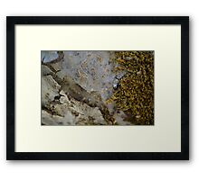Natural Fibre Framed Print