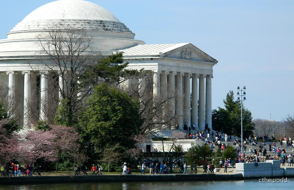 Springtime in Washington DC - 1 by ctheworld