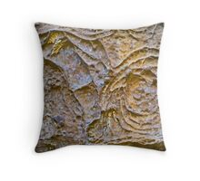 Swirls and Whorls  Throw Pillow