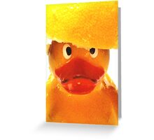 Felix  - Lemon Head Two Greeting Card