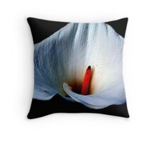 Delicate Fabric Throw Pillow