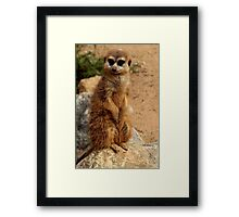 What You Saying? Framed Print