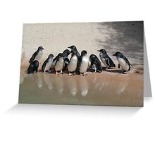 Fairy Penguin n Reflection Greeting Card