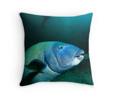 Blue Cod & Diver Throw Pillow