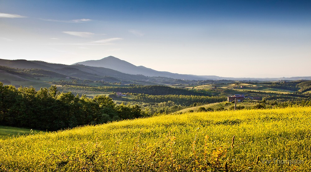 Tuscan Gold by vivsworld