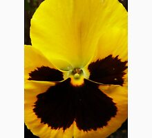 Golden Black Eyed Pansy Violet Yellow Flower T-Shirt