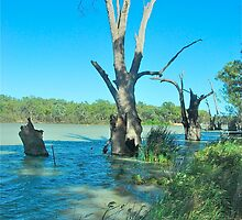 Outback Rivers by Penny Smith
