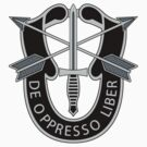 Special Forces Insignia by 5thcolumn