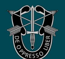 19th Special Forces Group Sticker