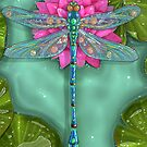 Dragonfly and Water Lily by Zdenek Sasek