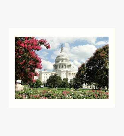 Capitol Blooms Art Print