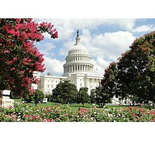 Capitol Blooms Photographic Print
