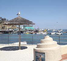 The Beach on Avalon Bay by seeingred13