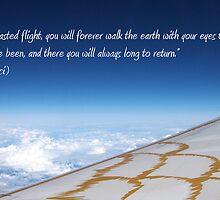 Once you have tasted flight...  by Yvonne Falkenhagen