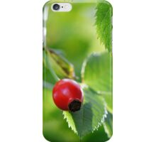 Wild Rose iPhone Case/Skin