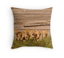 Five fox kits by old Saskatchewan granary Throw Pillow