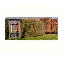Gateway in the woods Art Print