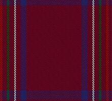 01834 Burnett of Leys Hunting Clan/Family Tartan Fabric Print Iphone Case by Detnecs2013