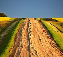 Beautiful colors along a Saskatchewan country road by pictureguy