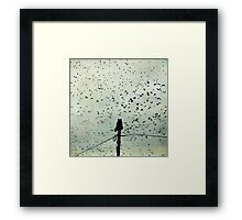 The Dreamer Framed Print