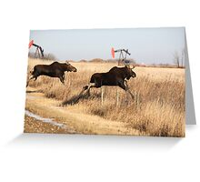 Young moose leaping over barbed wire fence Greeting Card