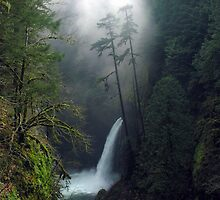 Metlako Falls 4830_111706 by Randy Craig (nature & landscape photography)