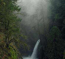 Metlako Falls 4835_111706 by Randy Craig (nature & landscape photography)