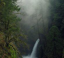 Metlako Falls 4835_111706 by Randy Craig (nature & landscape photography)