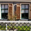 Tw windows with shutters by foppe47