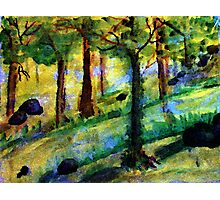 Study of trees, tutorial, watercolor Photographic Print