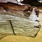Driftwood Face by franceshelen