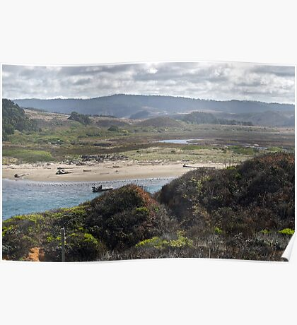 Coastal Tidelands Poster