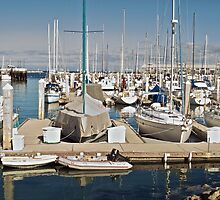 Harbor at Monterey I by DaveKoontz