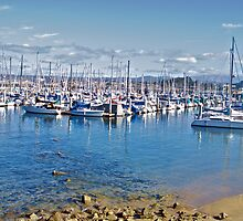 Harbor at Monterey III by DaveKoontz