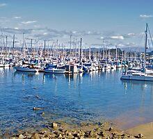 Harbor at Monterey III by DaveKoontz