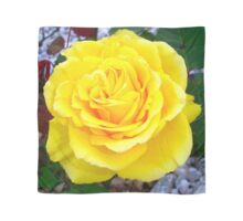 Head On View Of A Yellow Rose With Garden Background Scarf
