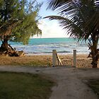 Gateway to the beach, San Juan, Puerto Rico by akl85ky