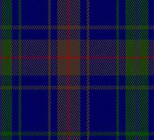 01839 Burt Tartan Fabric Print Iphone Case by Detnecs2013