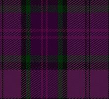 01842 By Storm Tartan Fabric Print Iphone Case by Detnecs2013