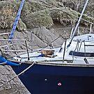 Skippool Boat by SophieGorner7