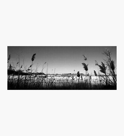 Plumb Island B&W Photographic Print