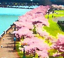 Cherry Blossom Time by wandringeye