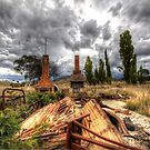 A Day Best Forgotten  ~ remnants of 2003 Canberra Fires ~ by Kym Bradley