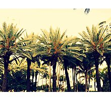 South Beach Landscape - Photography Miami Florida Photographic Print