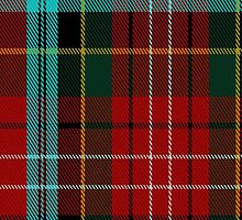 01846 Caledonian Cameron Commando Tartan Fabric Print Iphone Case by Detnecs2013