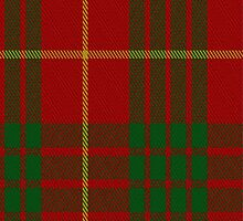 01856 Cameron Clan/Family Tartan Fabric Print Iphone Case by Detnecs2013
