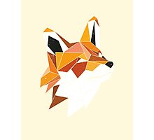Faux Renard Photographic Print