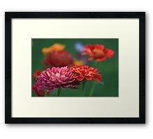 Colourful combo Framed Print